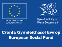 European Social Fund in Wales